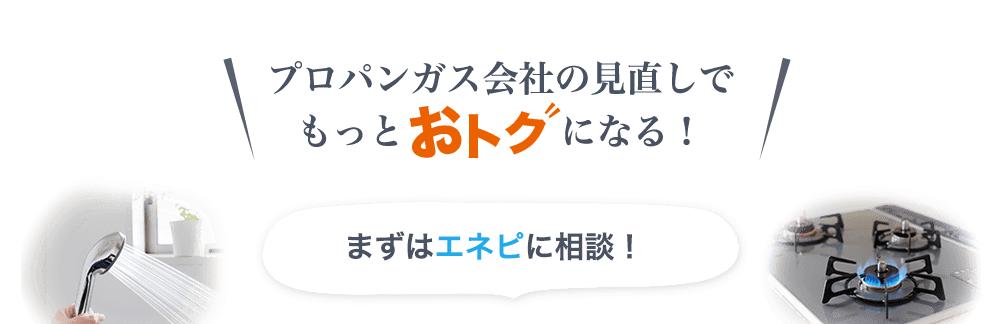 エネピ(enepi)のロゴ