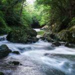 埼玉県の景色